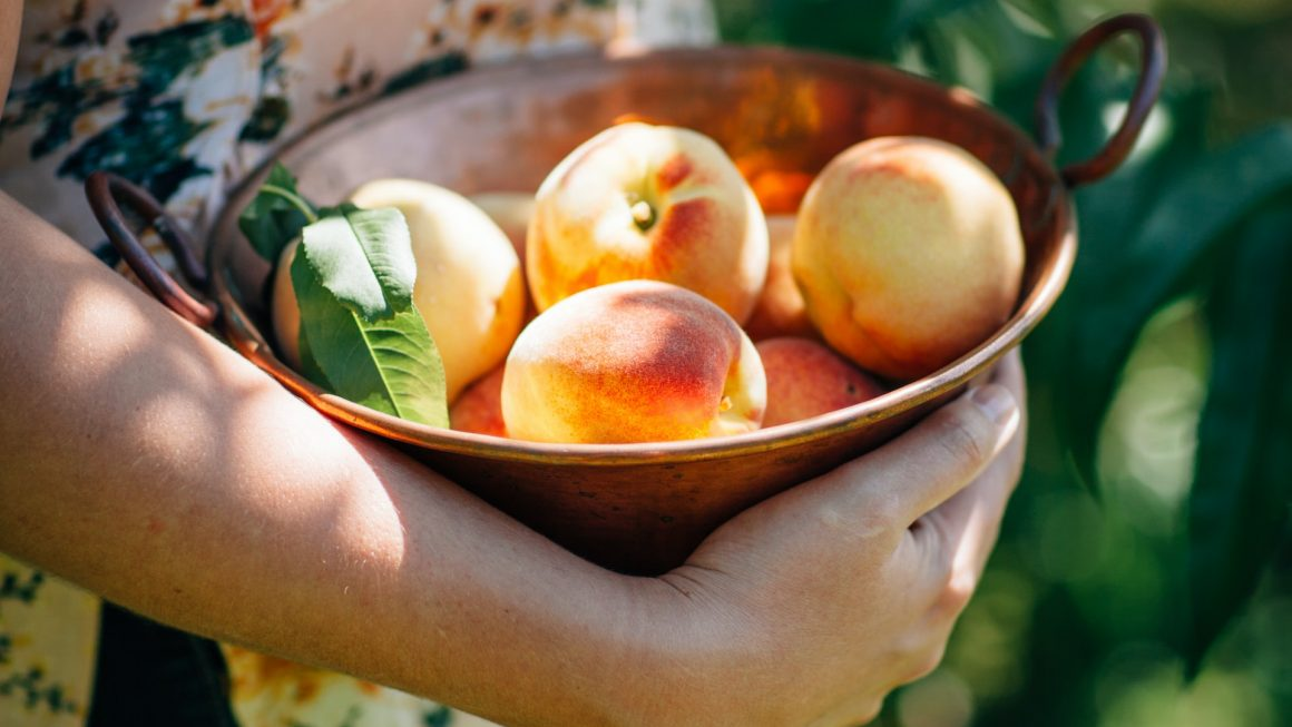 What is the 'Planetary Health Diet'?